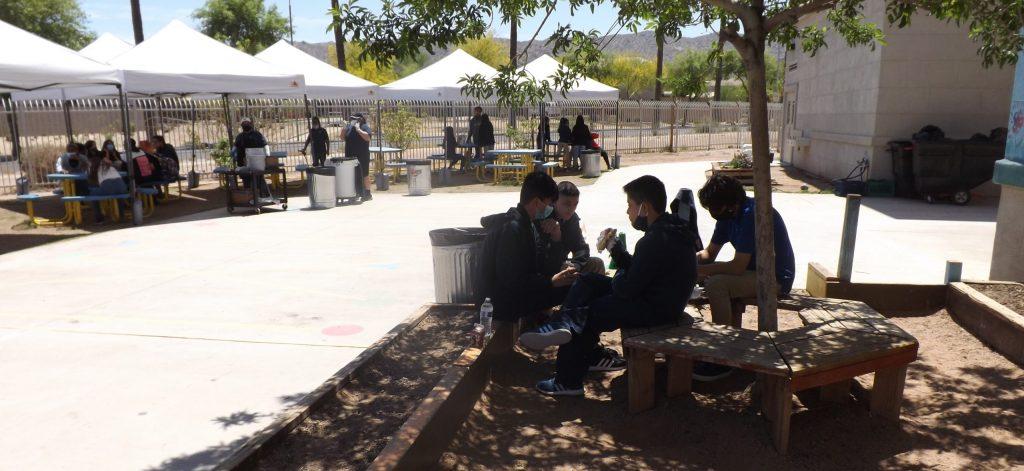 Children eating lunch under tree